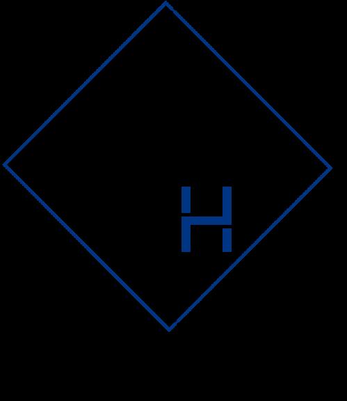 Logo sdmh 2